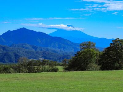 清里高原のペットと泊まれる宿&ペットと行きたい絶景観光スポット